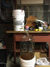 How To: Brew Beer, Day6