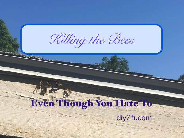 Killing The Bees (Even Though You HateTo)